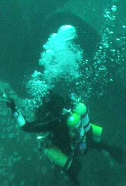 Diving trips on Atlantic Diver